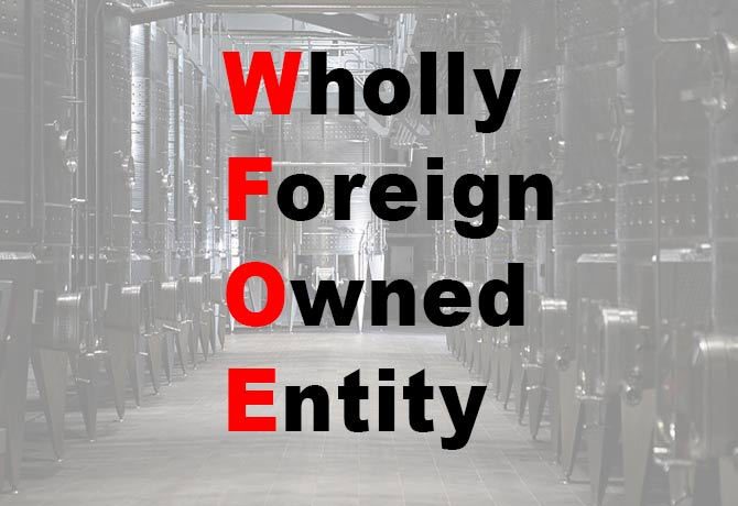 Wholly Foreign Owned Entity In China (WFOE)